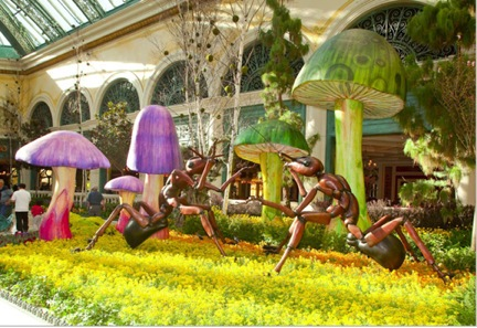 Bellagio Summer Ants | Venue Arts