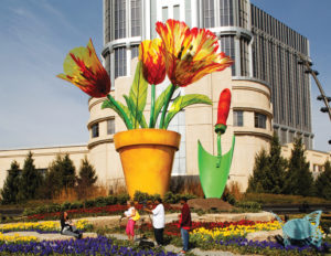 MGM Detroit Spring Tulips