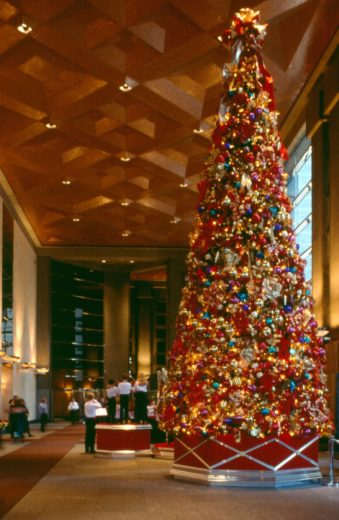 holiday tree showing